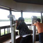 南港野鳥公園